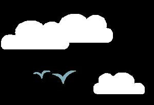 aef-birds-cloud